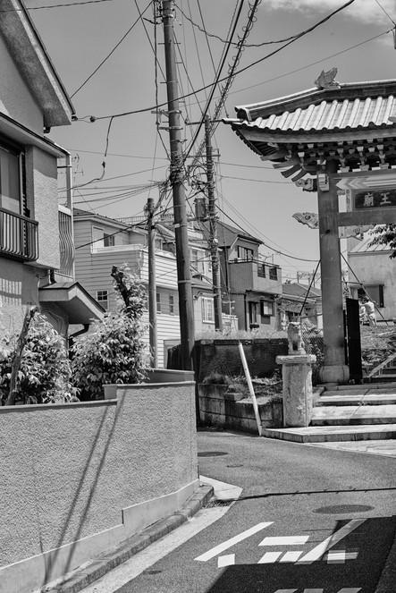 -Tokio_2019_2281SW.jpg