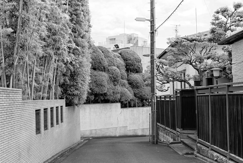 -Tokio_2019_0376SW.jpg