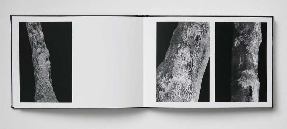 Repros_Buch18.jpg