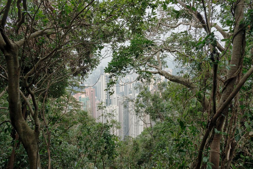 HongKong_0362.jpg