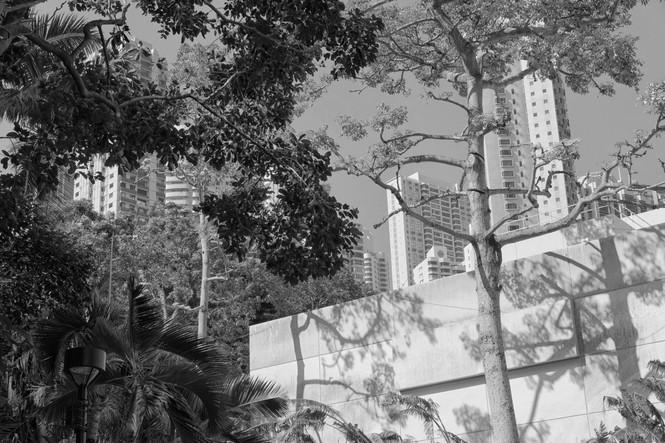 HongKong_0596SW.jpg