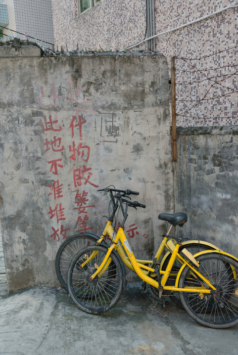Shenzhen1105.jpg