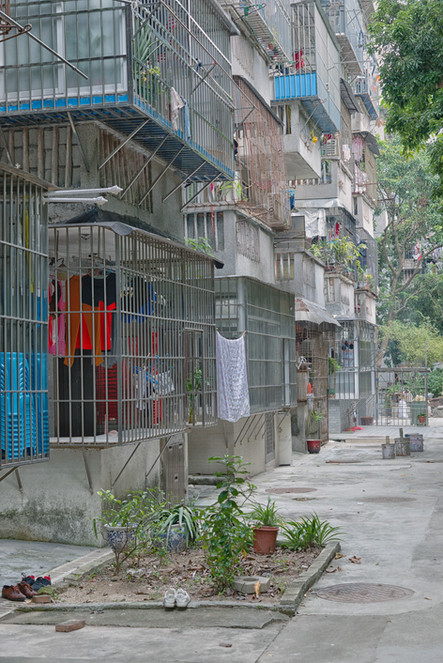 Shenzhen0141.jpg