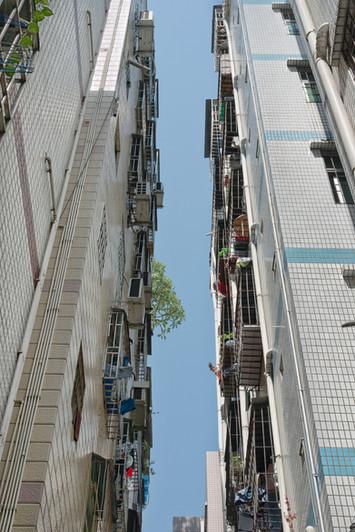 Shenzhen1083.jpg