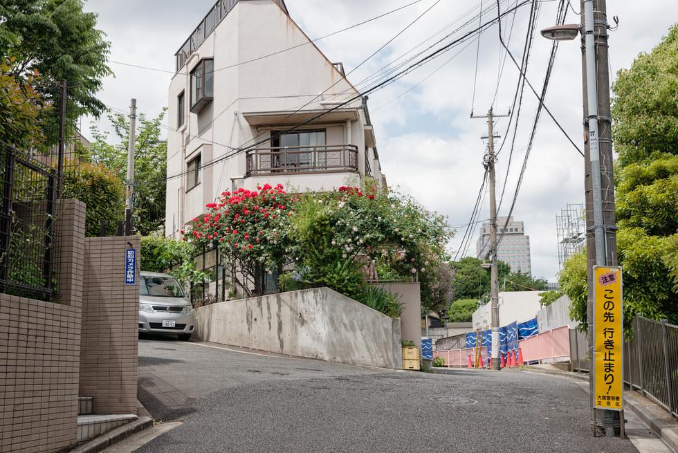 Tokio_2019_0390.jpg