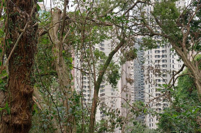 HongKong_0421.jpg