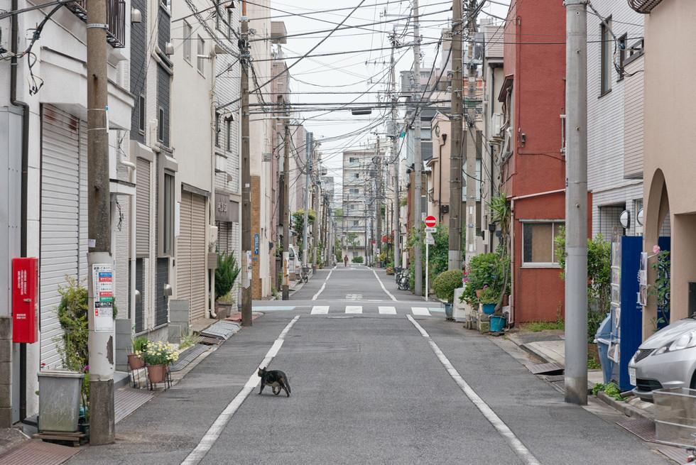 Tokio_2019_1162.jpg