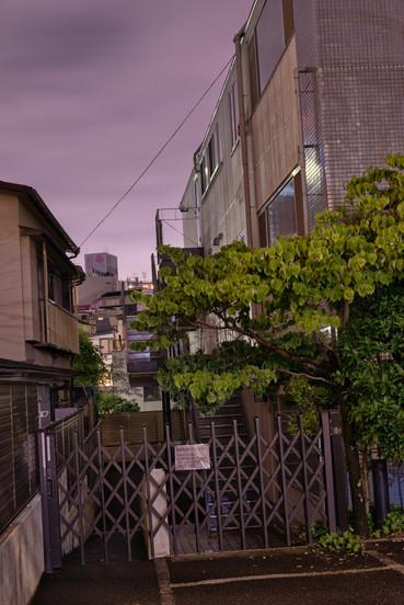 Tokio_2019_2167.jpg