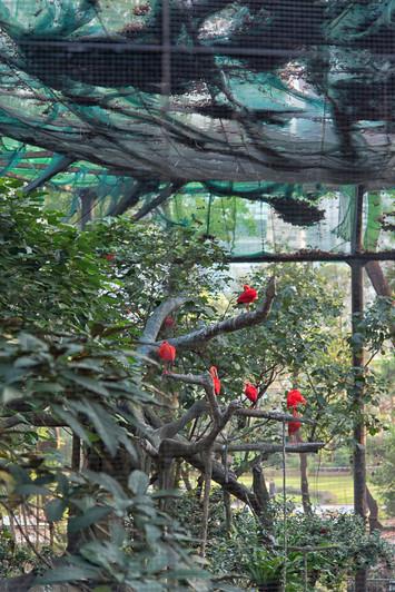 HongKong_0052.jpg
