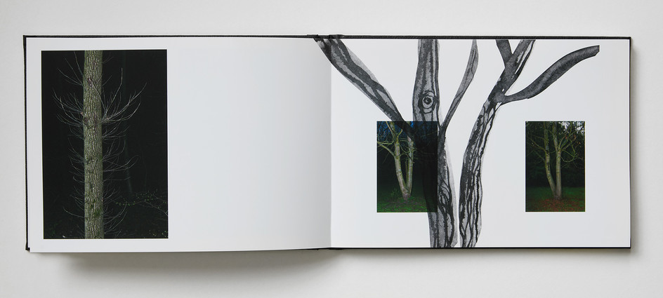Repros_Buch26-1.jpg