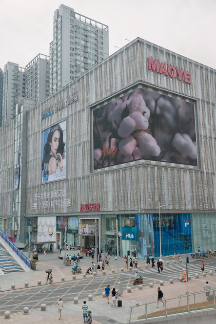 Shenzhen0334.jpg