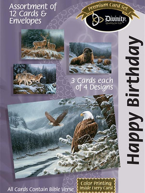 Happy Birthday Cards, Frost, Box of 12