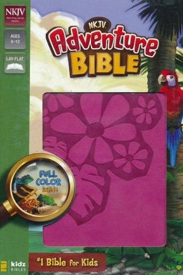 NKJV Adventure Bible, Raspberry
