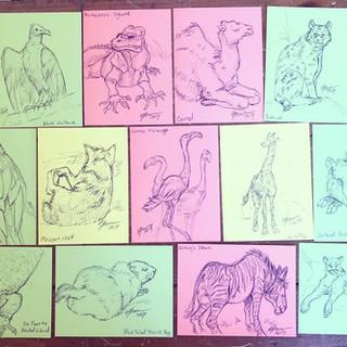 Zoo Sketch Postcards