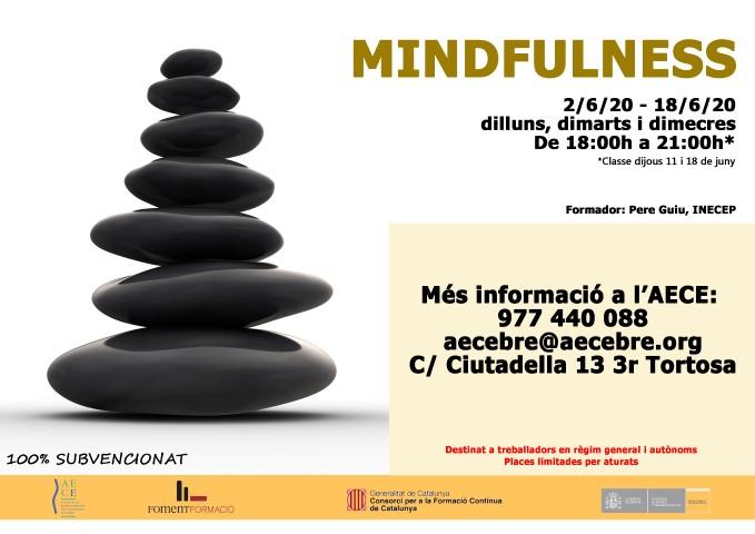 Mindfulness 2020