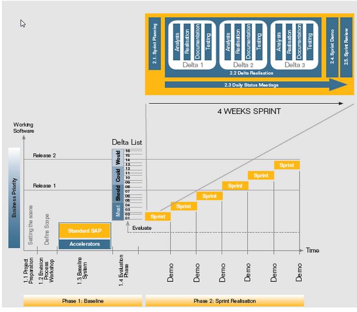 Platinum DB SAP Implementation