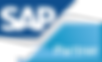 PDB SAP Partner