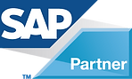 Platinum DB SAP Partner