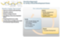 Platinum DB SAP Iterative Approach