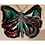 Thumbnail: Butterfly Chain Pull-Green/Red/Black