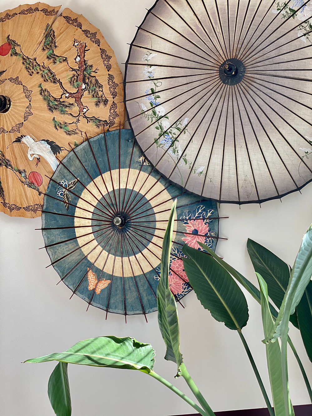 Vintage Parasols as Wall Art