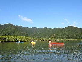 マングローブカヌー (3).JPG