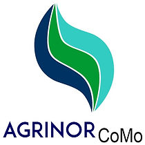 Fertilizante Foliar - Tratamento de Sementes - Agrinor CoMo