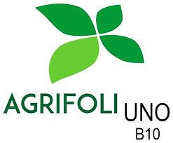Agrinor - Fertilizantes Foliares - Formulação Simples - Agrifoli Uno B 10 (Boro)