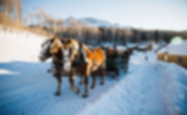 sleigh leaving ranch 9.jpg