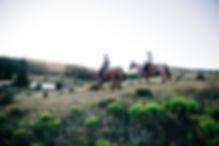 AbieLivesayPhotography-TellurideWrangler