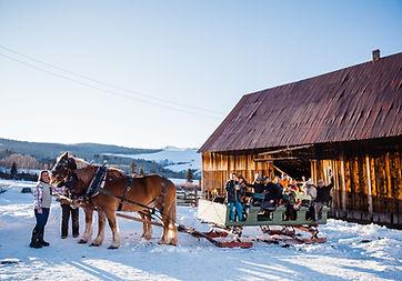 loaded sleigh.jpg