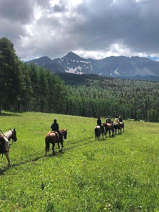 wilson mesa trail