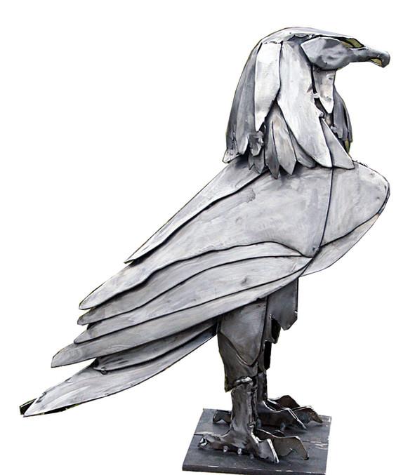 Raubvogel massiv.jpg