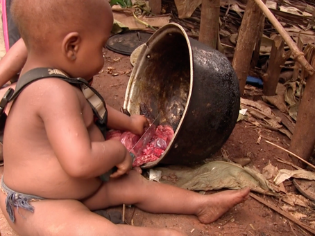 How do hunter-gatherer toddlers learn forest skills?
