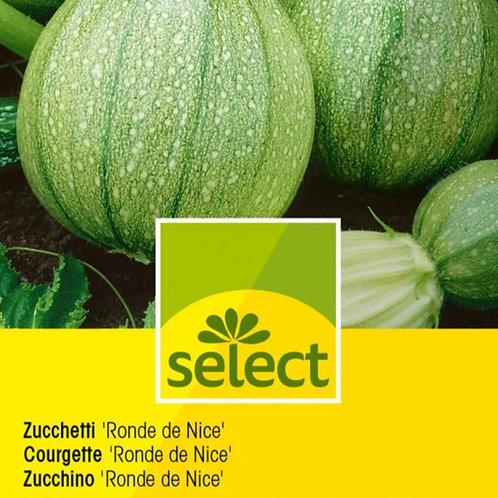"Zucchetti ""Ronde de Nice"""