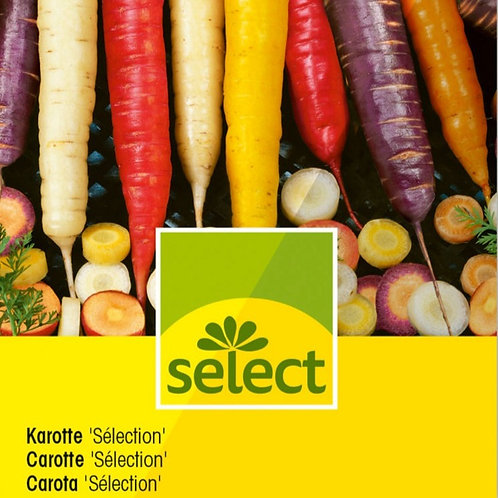 "Karotte ""Selection"" 2g für ca. 5m2"