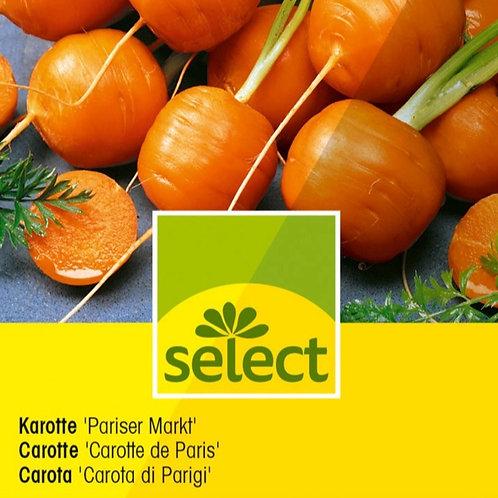 """Karotte """"Pariser Markt"""" geeignet für den Balkon!"""
