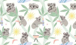 koala back.jpg