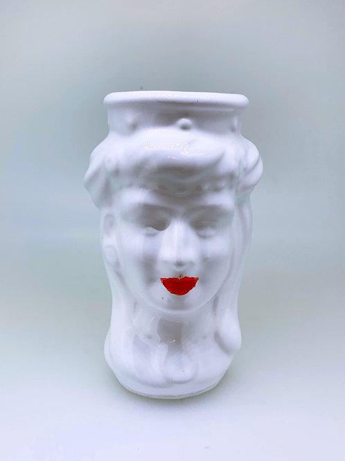 Testa di Moro (Femmina) 10 cm