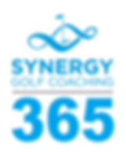 Synergy 365 logo.png