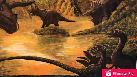 Dino wall.MOV