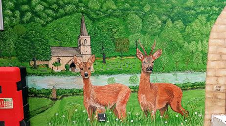 Male and female Roe Deer