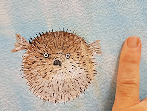 Blowfish - finger for size comparison