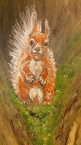 Red Squirrel detail
