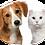 Thumbnail: 天然草本抗臭•消菌劑 (寵物用) 500 毫升