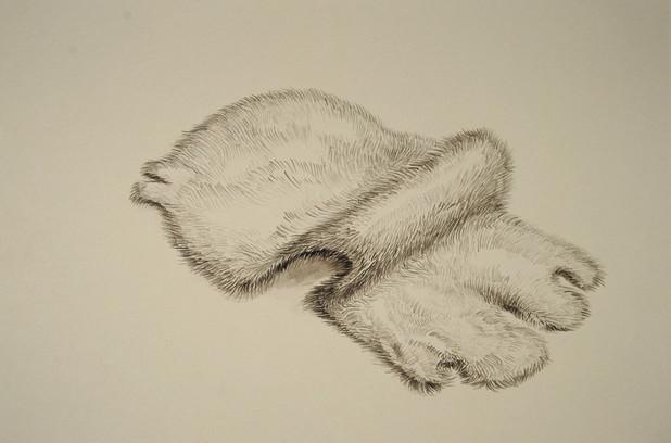untitled (pelt 1)