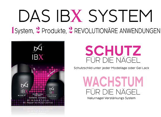 ibxsystem15.png