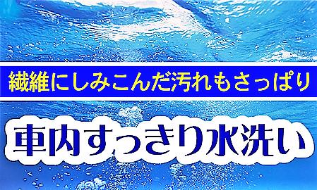 車内すっきり水洗い.png
