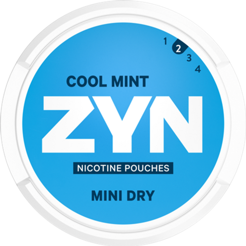 ZYN COOLMINT 3 MG #2