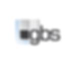 Gesellschaft für Bild- und Signalverarbeitung (GBS) mbH